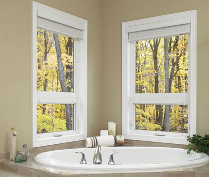 Windows - Bathroom - Remodel